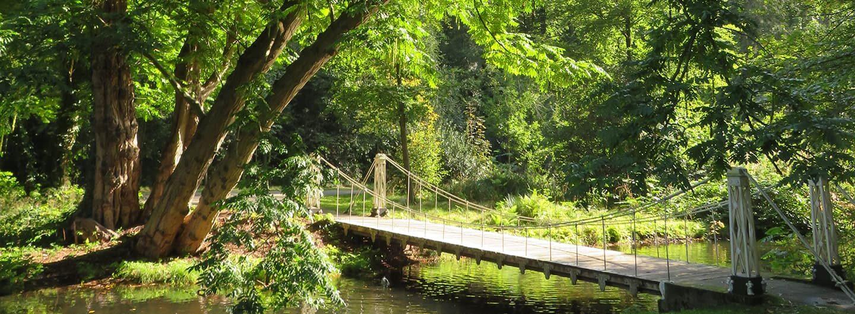 Bruggetje in Park Sonsbeek - Arnhem