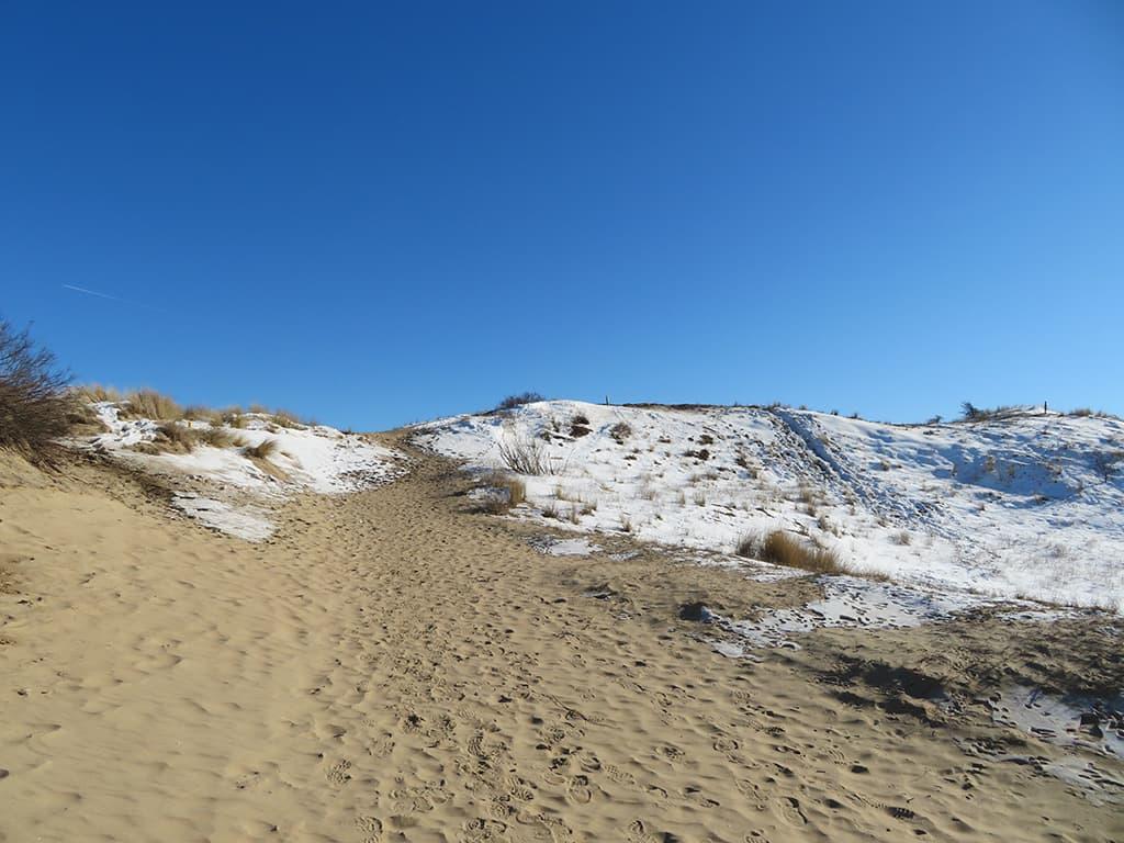 MirandaWandelt - Nationaal Park Zuid Kennemerland - gele route - duin