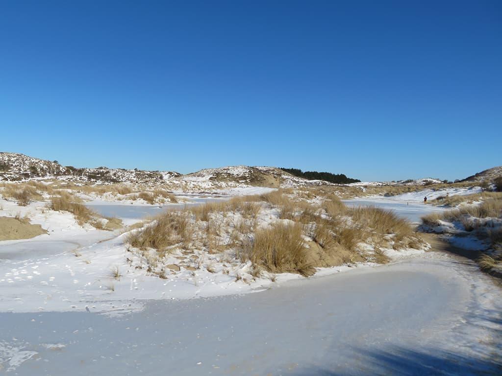 MirandaWandelt - Nationaal Park Zuid Kennemerland - gele route - ijs