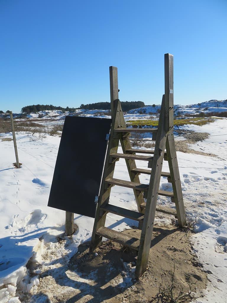 MirandaWandelt - Nationaal Park Zuid Kennemerland - gele route - trap wisentenvlak