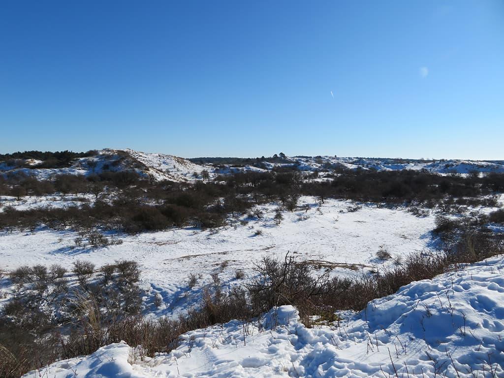 MirandaWandelt - Nationaal Park Zuid Kennemerland - gele route - uitzicht