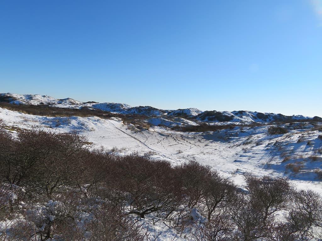 MirandaWandelt - Nationaal Park Zuid Kennemerland - gele route - uitzicht start