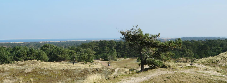 MirandaWandelt - Vlieland - uitzicht